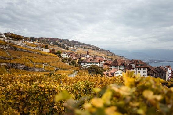 Herbst in Lavaux