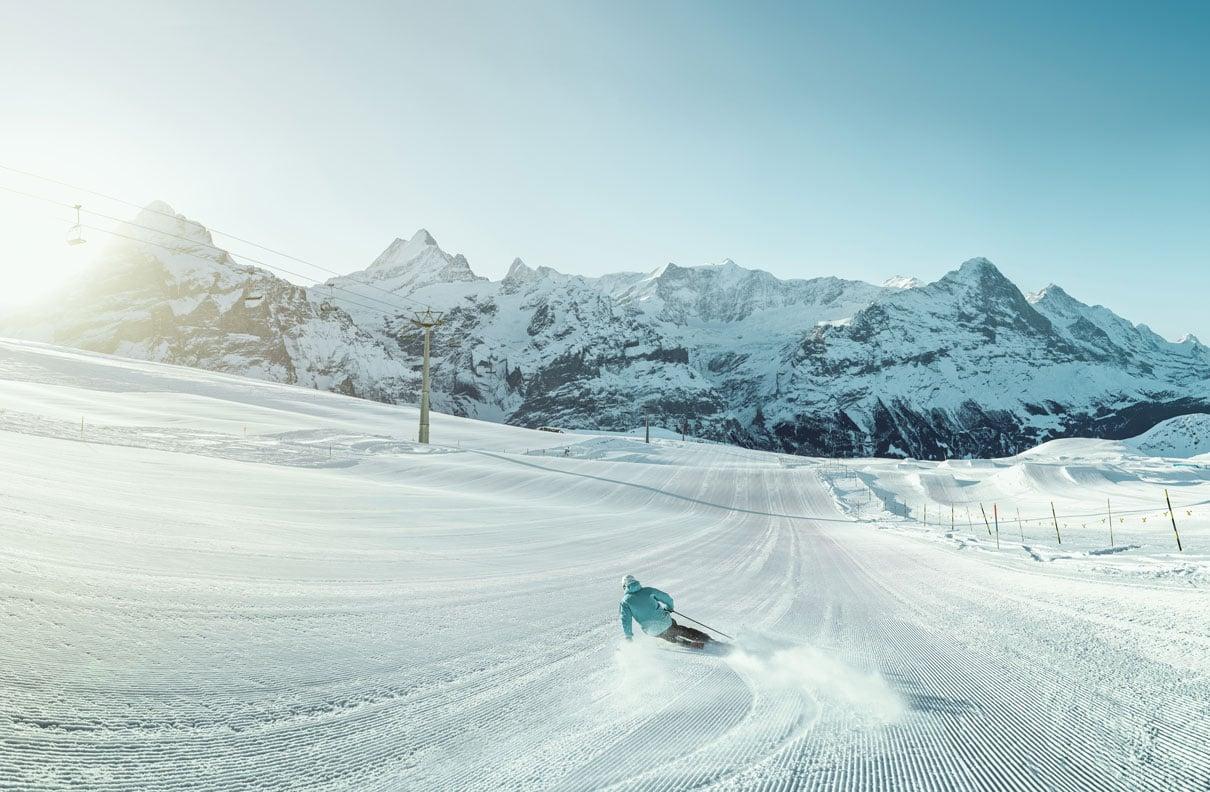 Bloggrösse-Grindelwald